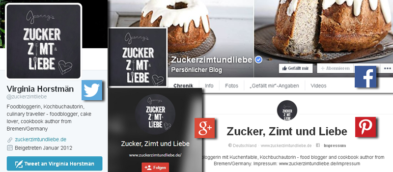 Die Touchpoints: Social Media Profile der Influencer. ©ADENION 2015